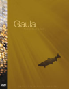 2784/Gaula-River-of-Silver-and-Gold