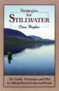 342/Strategies-For-Stillwater