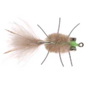 3725/Umpqua-Rag-Head-Crab