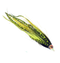 4848/Devils-Tickler-Chartreuse-and-Black