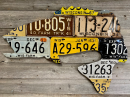 6398/Wisconsin-License-Plate-Smallmouth-Bass