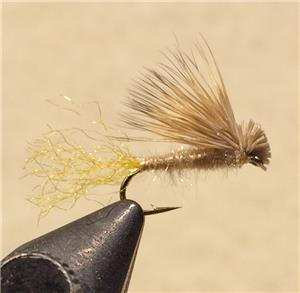 X Caddis - Mult Colors