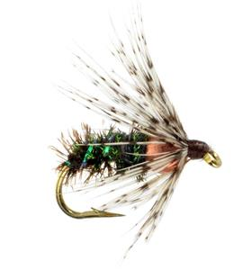 BH Soft Hackle - Peacock